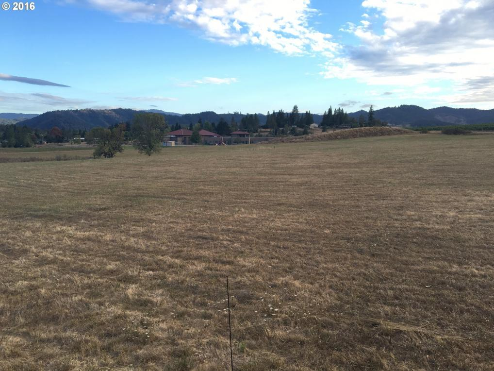 Lookingglass Rd, Winston, OR 97496