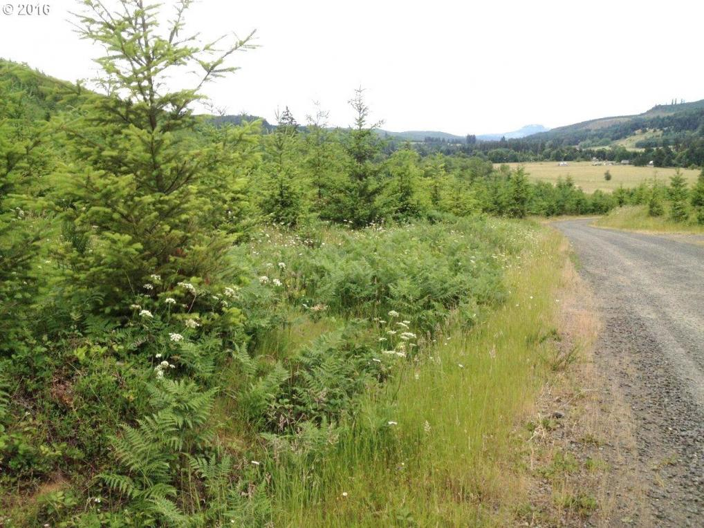 31369 Fireclay Rd, Cottage Grove, OR 97424