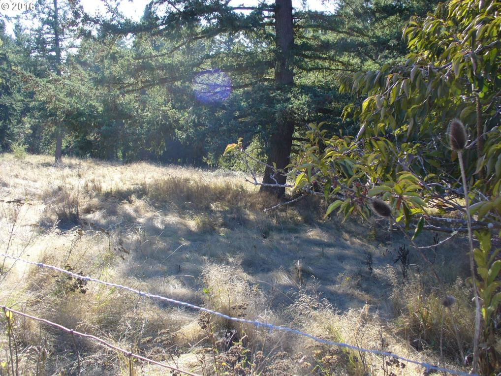S Grasle Rd, Oregon City, OR 97045