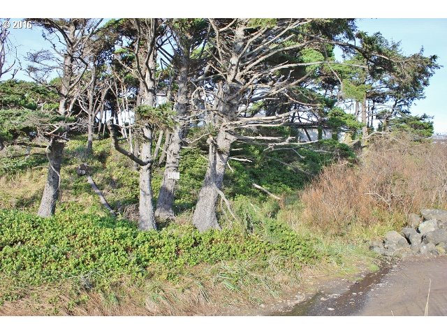 Wallace St, Depoe Bay, OR 97341