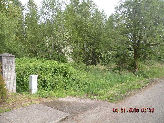 S Parkway Ave, Battle Ground, WA 98604
