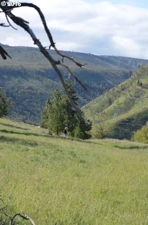 6875 Mill Creek Rd, The Dalles, OR 97058