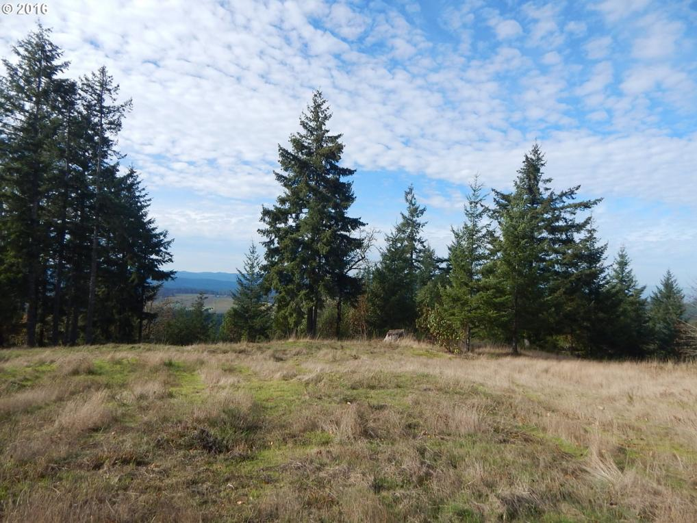 Briggs Hill, Eugene, OR 97405