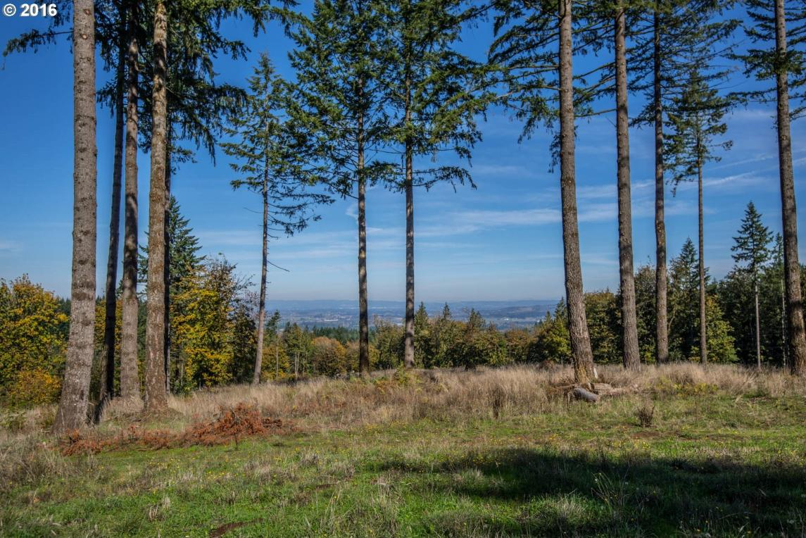 26280 SW Neill Rd, Newberg, OR 97132