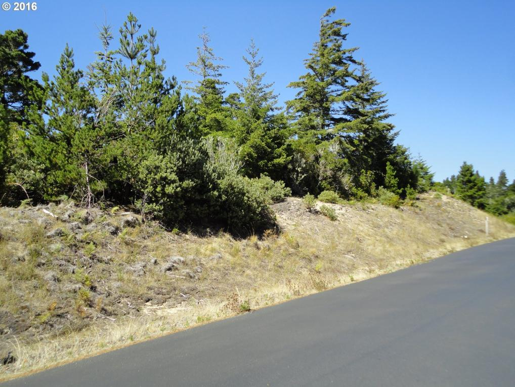 Dunewood Dr, Florence, OR 97439