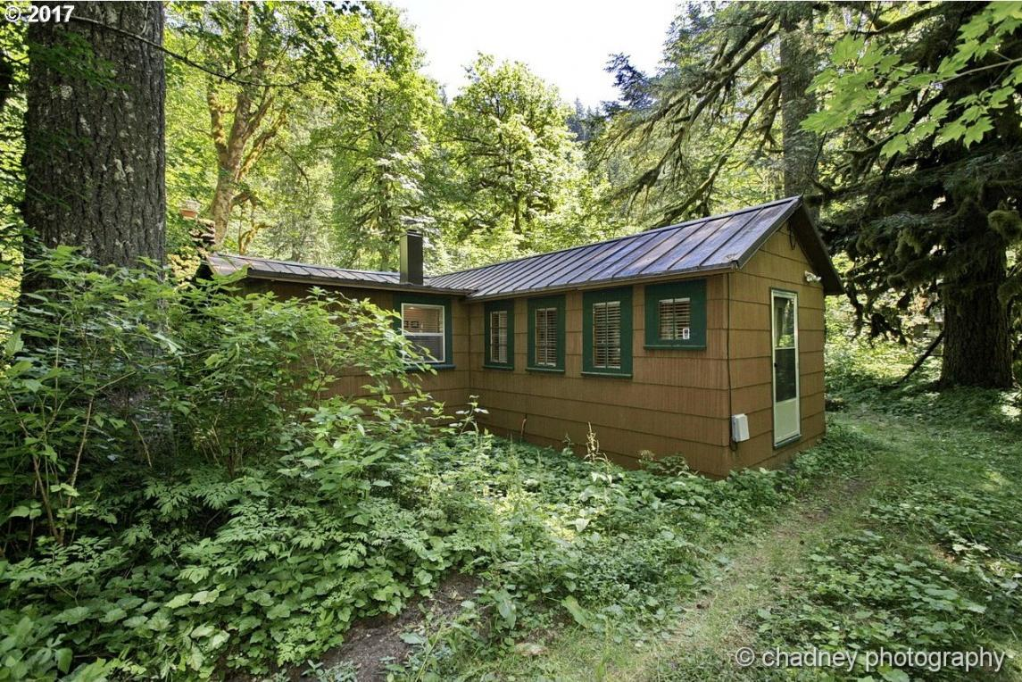 29018 E Road 20 #67, Rhododendron, OR 97049