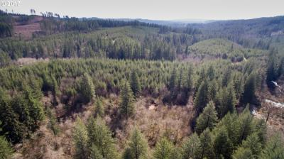 Photo of NE Lessard Rd, Camas, WA 98607