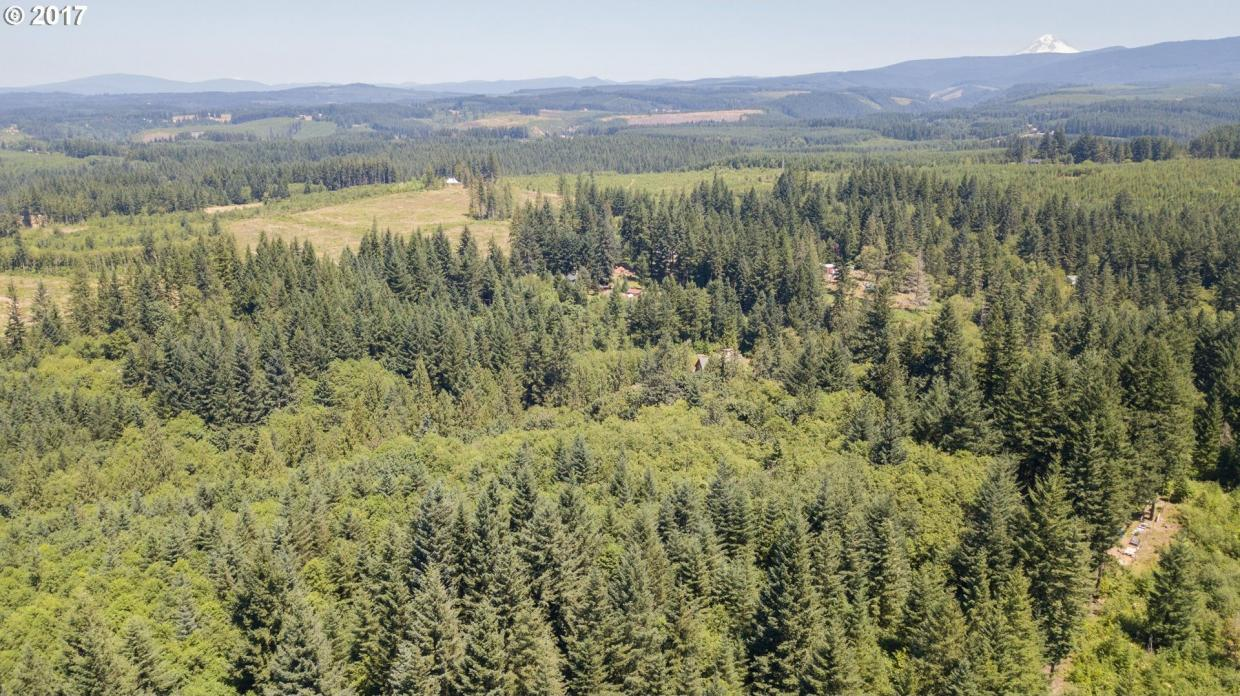 Tumala Mountain Rd, Estacada, OR 97023