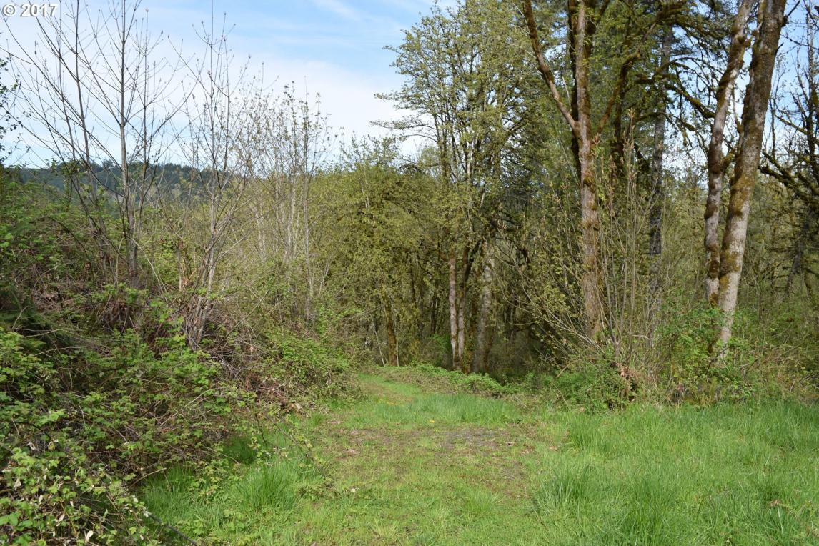 3650 NW Blacktail Dr, Mcminnville, OR 97128