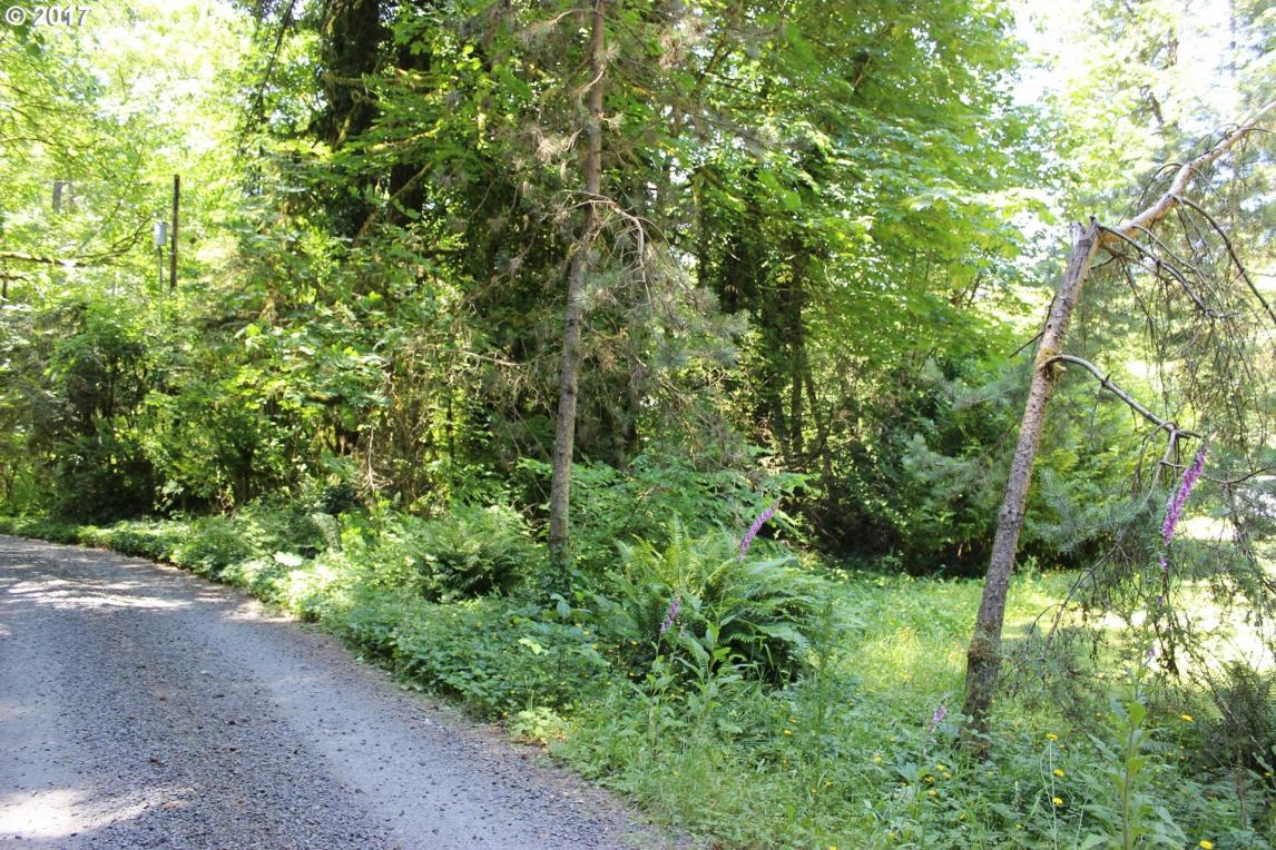 64073 E Relton Rd, Rhododendron, OR 97049
