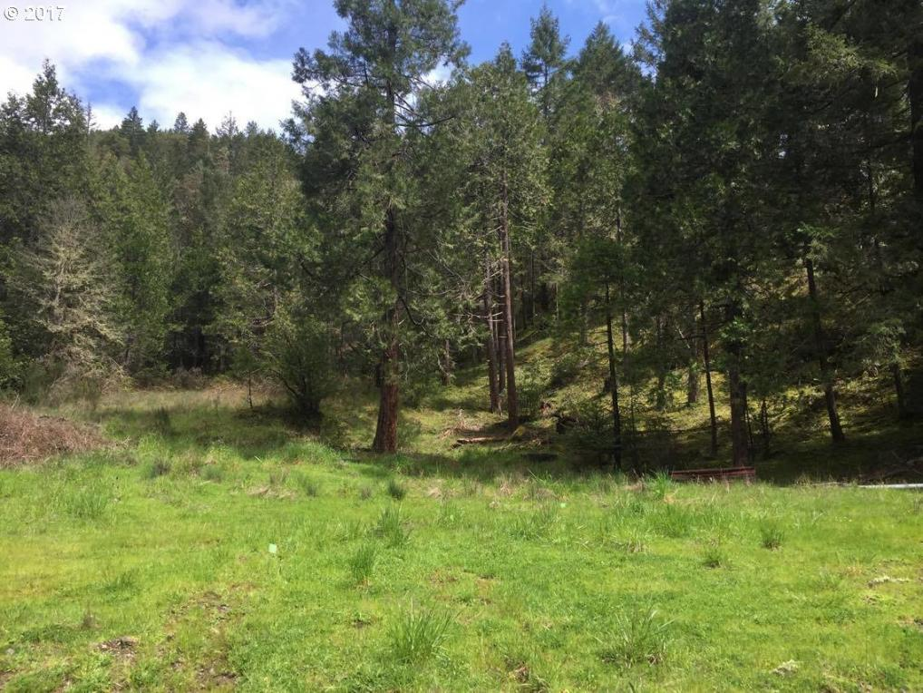 Sibold Canyon Rd, Tenmile, OR 97481