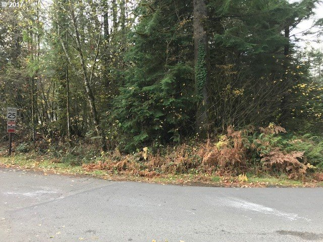 64604 E Sandy River Ln, Rhododendron, OR 97049