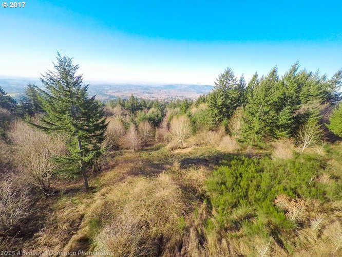 NE Slope Ln, Newberg, OR 97132
