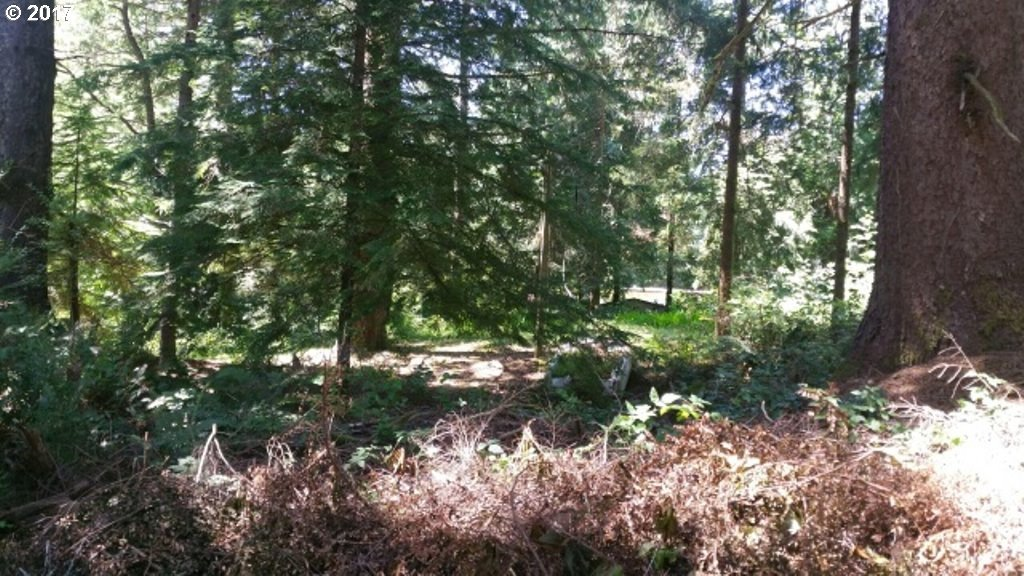 300 Shore Crest Dr, Florence, OR 97439
