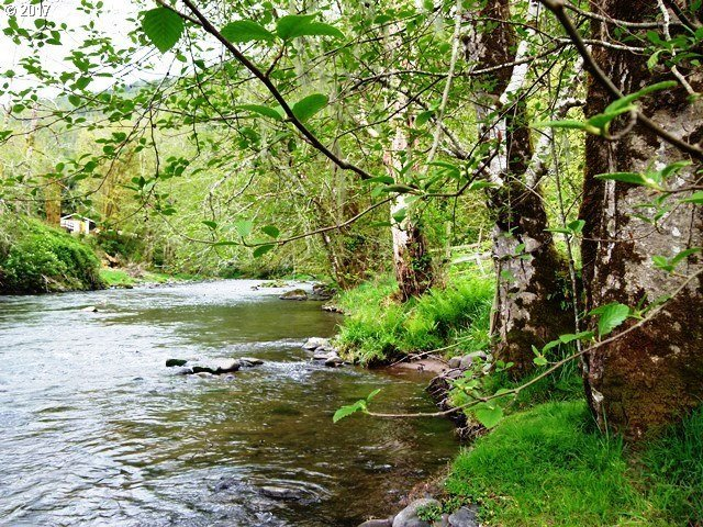 Trask River Rd, Tillamook, OR 97141
