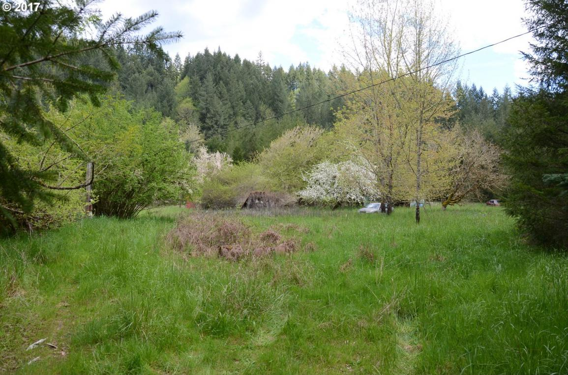 13461 S Butte Creek Rd, Scotts Mills, OR 97375