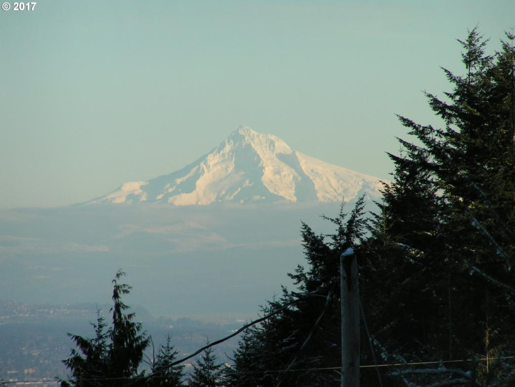 23605 NW Skyline Blvd, North Plains, OR 97133