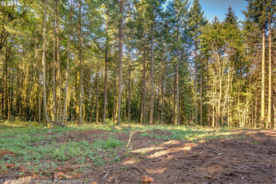 1512 S Kyle Pl, West Linn, OR 97068