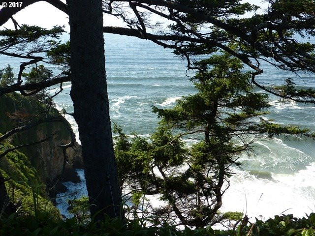 4800 Tl South Beach Rd, Neskowin, OR 97149