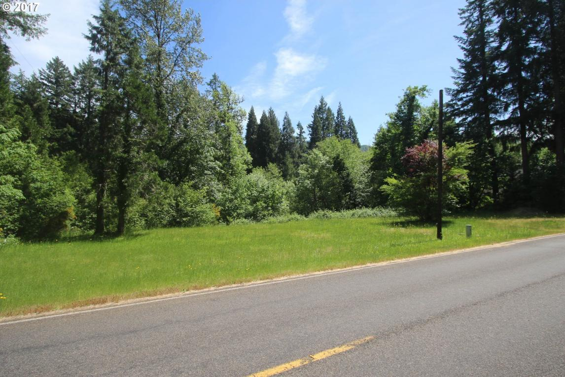 91247 Blue River Rd, Blue River, OR 97413