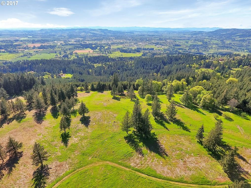 33588 NE Old Parrett Mountain Rd, Newberg, OR 97132