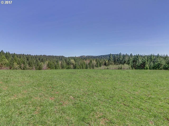 NW Mason Hill Rd, North Plains, OR 97133
