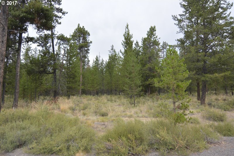 55025 Pinewood Ave, Bend, OR 97707