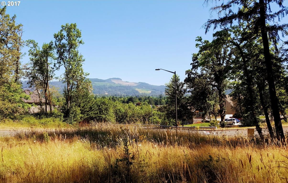 325 Mountaingate Dr, Springfield, OR 97478