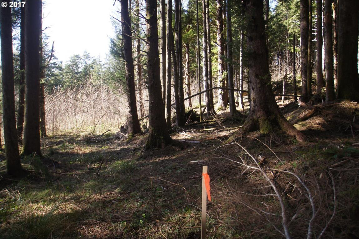 Lot 3 Cannonbeach Pk, Arch Cape, OR 97102