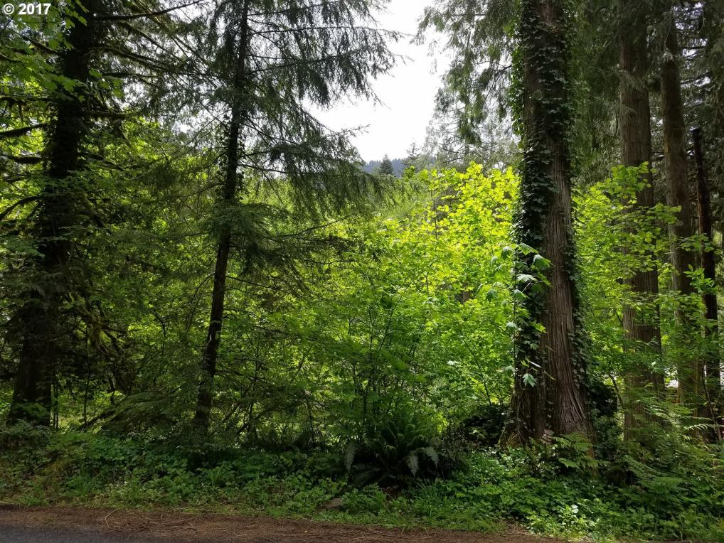 32849 E Mineral Creek Dr, Government Camp, OR 97028