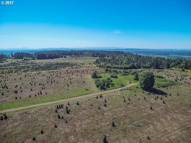 42172 Rodgers Mountain Loop, Scio, OR 97374