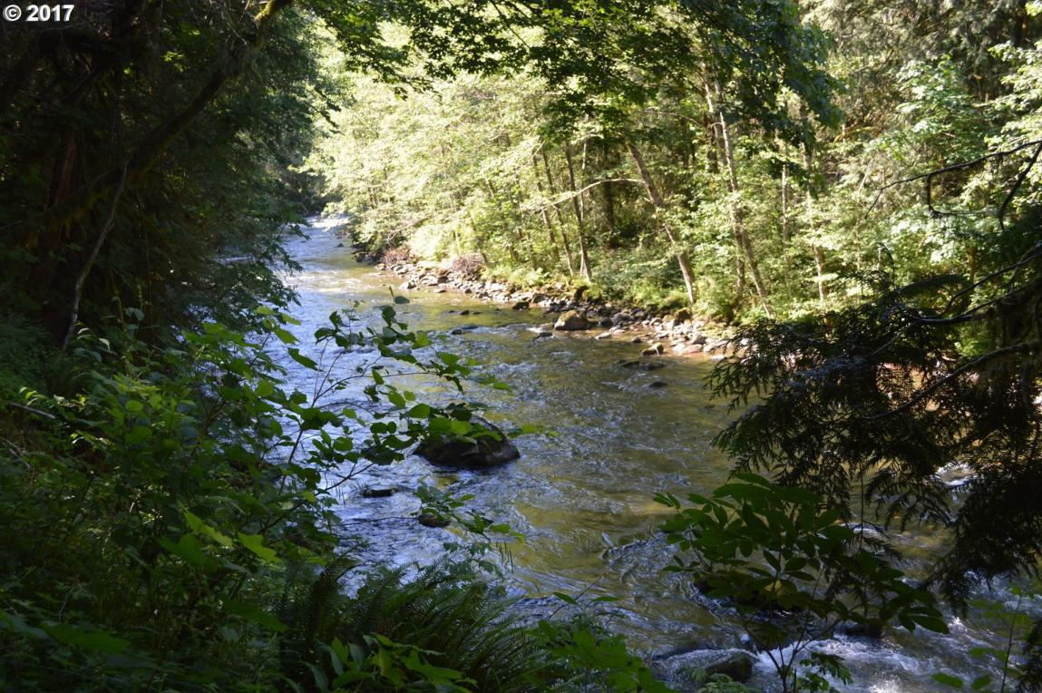 28003 E Lost Ln, Welches, OR 97067
