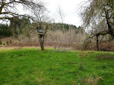 76698 Blue Mountain School Rd, Cottage Grove, OR 97424