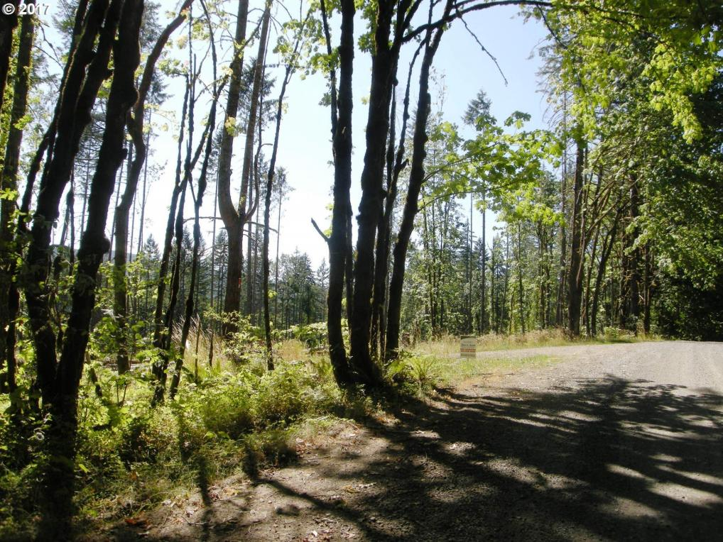 NW David Hill Rd, Forest Grove, OR 97116