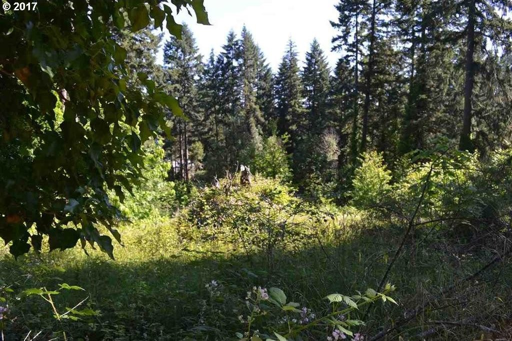 Kessell Dr, Sweet Home, OR 97386