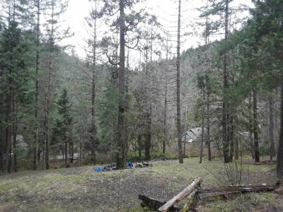 Photo of Evergreen Ln, Idleyld Park, OR 97447