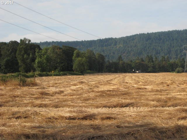 M J Chase Rd, Springfield, OR 97478