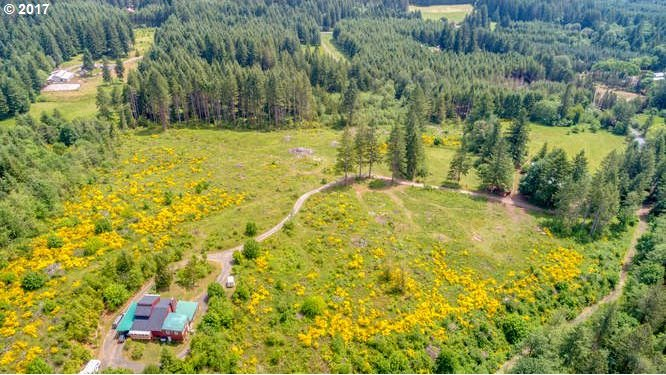 51735 NW Scofield Rd, Buxton, OR 97109