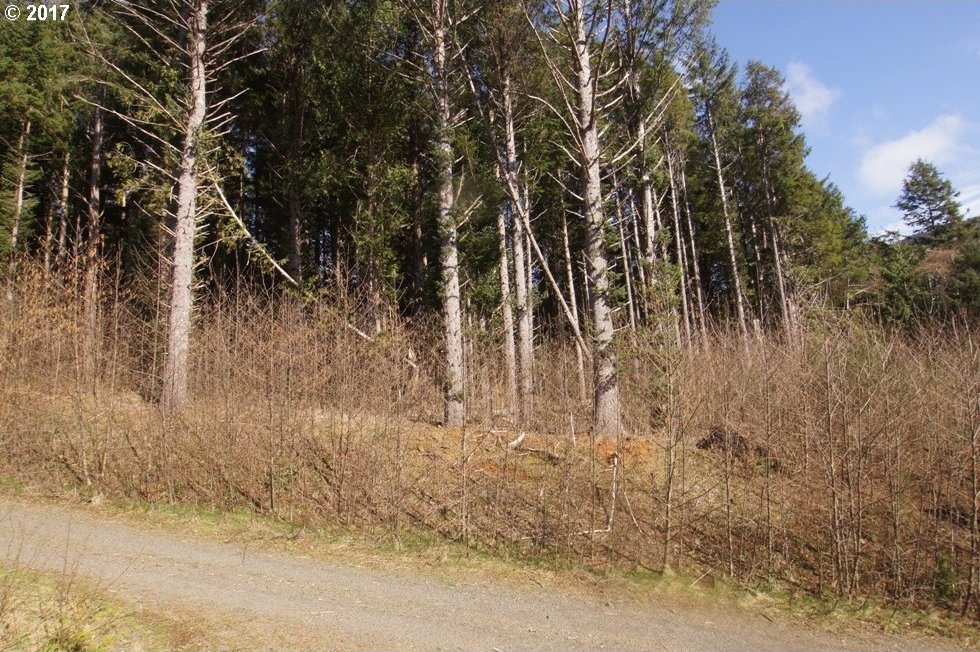 Cannon Beach Pk Lots, Arch Cape, OR 97102