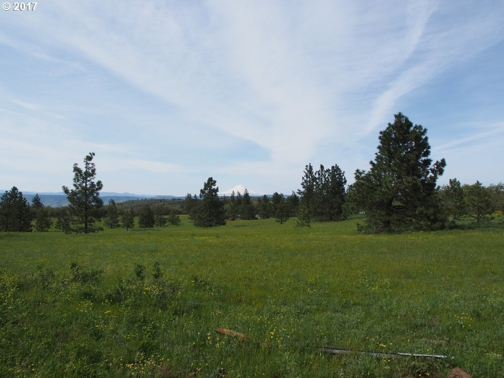 Mt View Dr, The Dalles, OR 97058