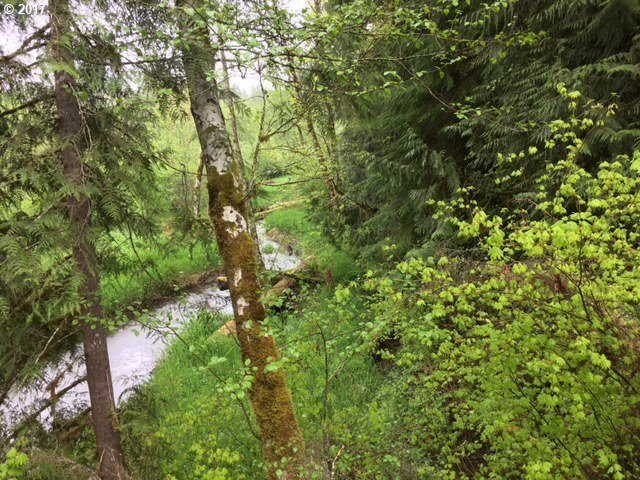 Crystal Creek, Welches, OR 97067