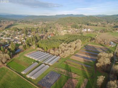 38177 Queens Rd, Marcola, OR 97454
