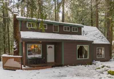 Photo of 69882 E Rhododendron Ln, Rhododendron, OR 97049