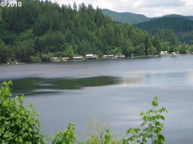 Two Lakes Ln, Triangle Lake, OR 97412