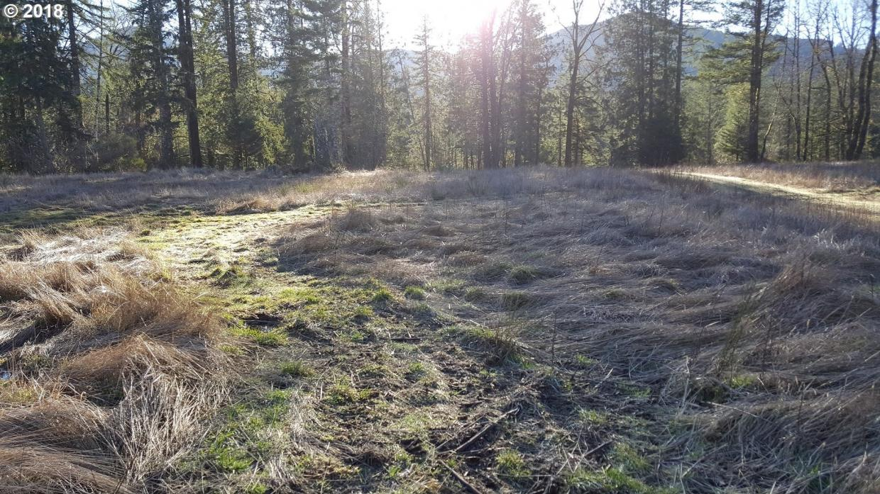 22542 E Brightwater Way, Rhododendron, OR 97049