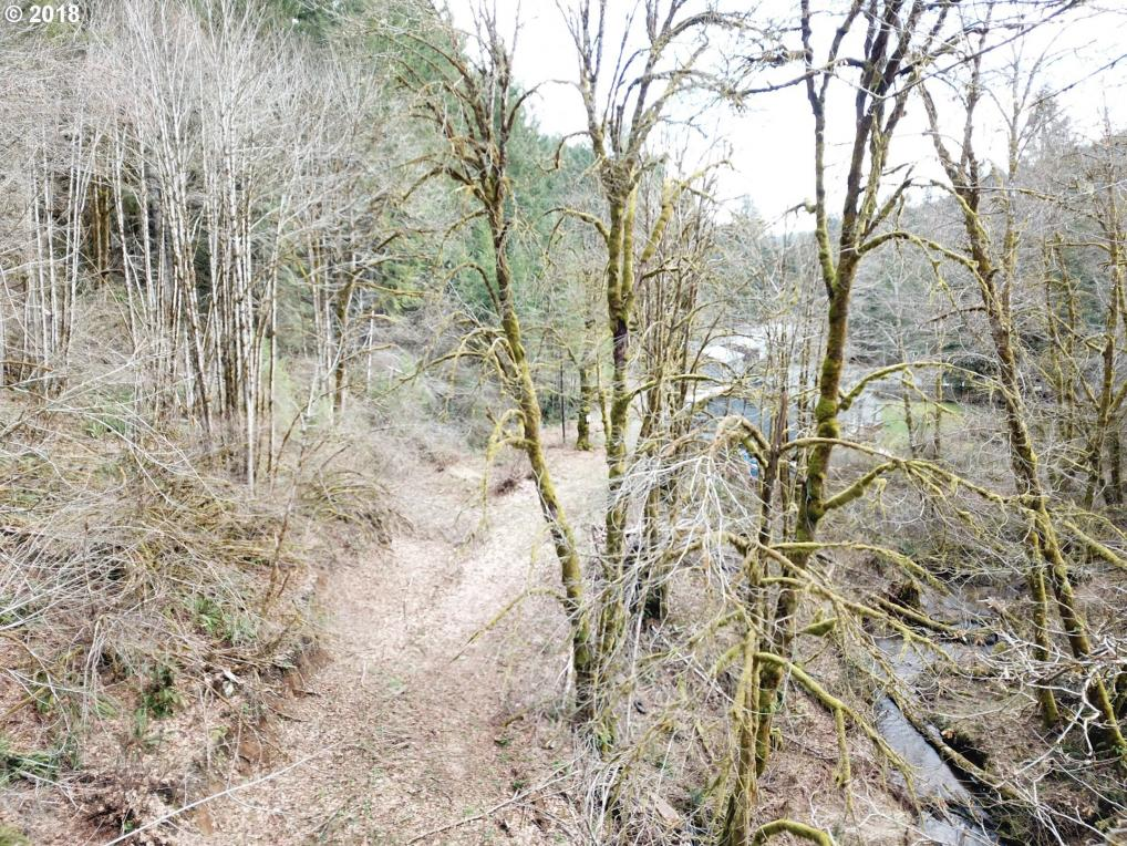 61850 NW Finger Creek Dr, Gales Creek, OR 97117