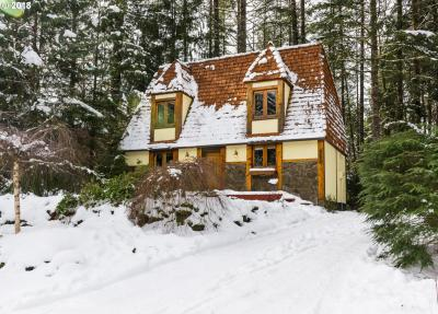Photo of 64848 E Pine Tree Way, Rhododendron, OR 97049