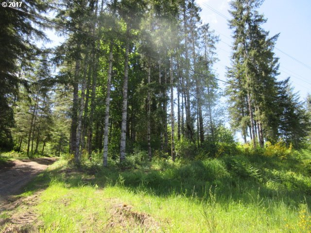 Timber (tax Lot 200) Rd, Vernonia, OR 97064