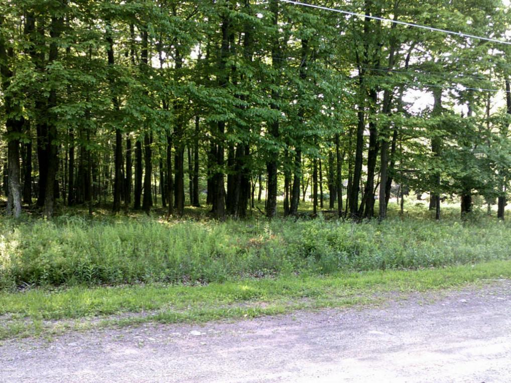 Lot 15/16 Falcon Ln, Canadensis, PA 18325