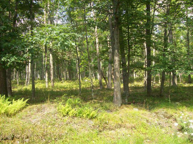 LOT 178A Ridge View Cir 178a Cir, East Stroudsburg, PA 18302